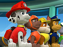 PAW Patrol All Dogs