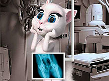 Talking Angela in Hospital